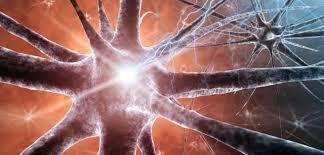 La Epilepsia en pacientes mayores de 50 años