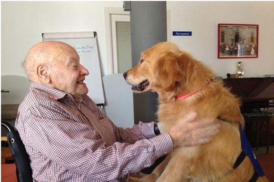 Resultado de imagen de terapias con perros